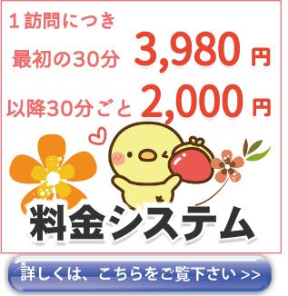 格安な修理費用がおすすめな京都のパソコン修理業者 エヌシーオーの料金システムのご説明ページのボタン